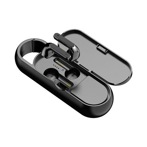 bluetooth speaker and earbuds