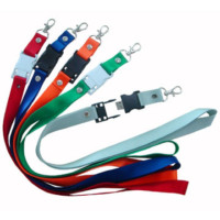 name card lanyard usb memory drive, different unit colours