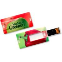 credit card thumb drive